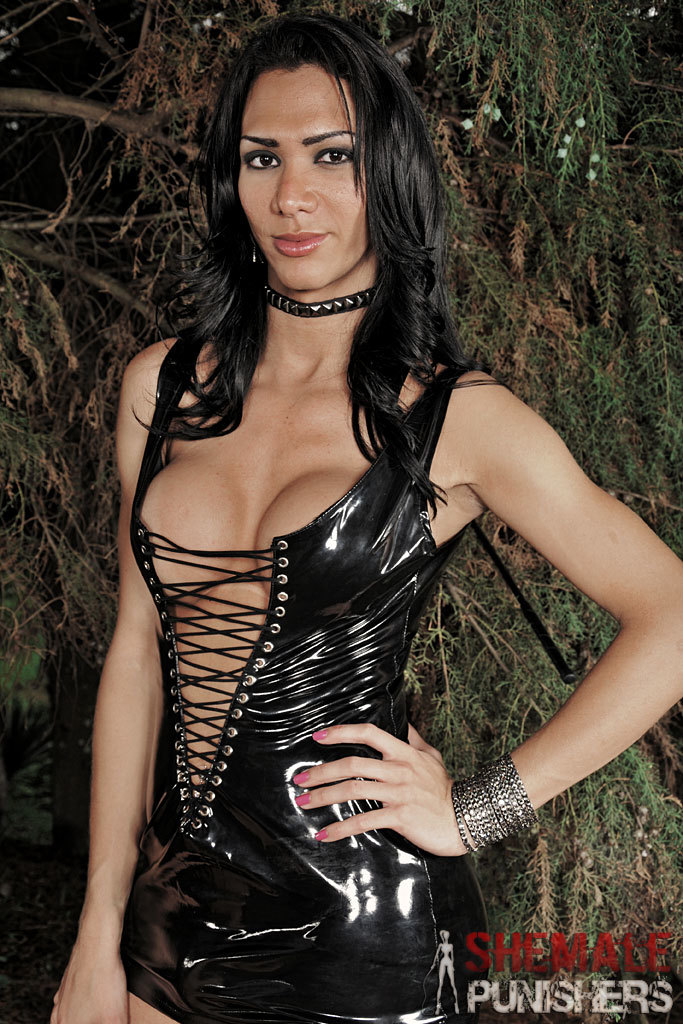 Sensual And Kinky T-Girl Domination Action