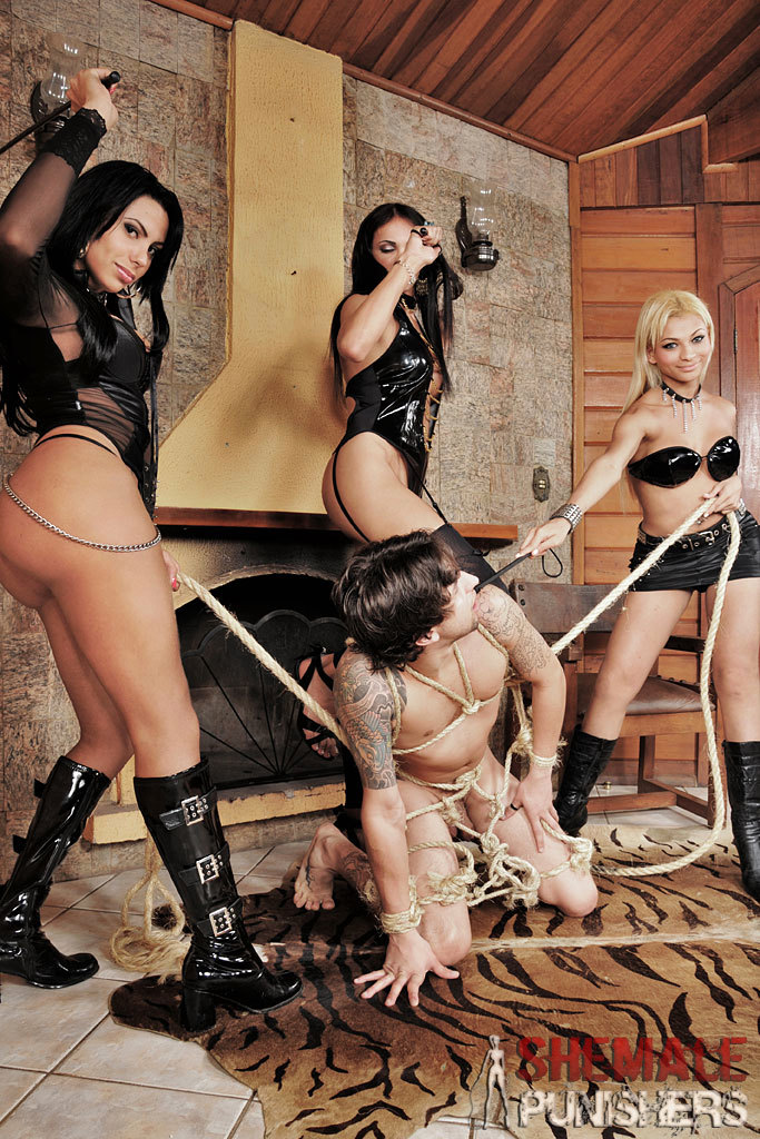 Tgirl Dommes Destroy This Submissive Male