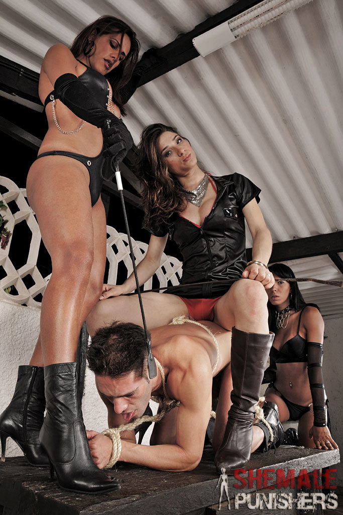 Trio Of Ts Punishers Dominating: Adriana, Jade, Lynda.